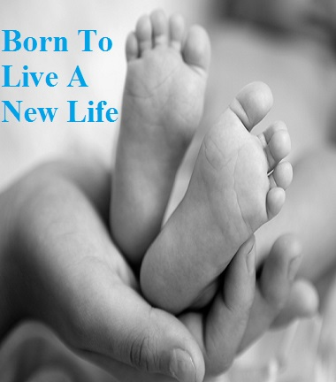Born To Live A New Life