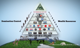 Marshall Swing: The Elites 2015 Global Economic Collapse Plan Exposed – Part 1